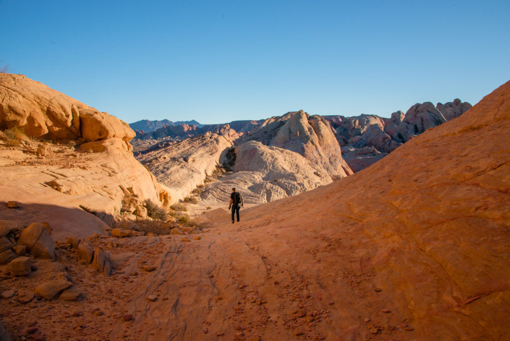 a photographer hikes through valley of fire state park in nevada at sunset, photographed by jamie bannon photography.