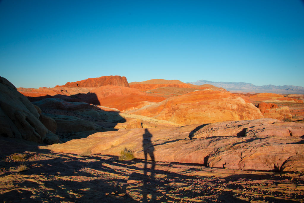 sunlight casts the long shadow of the photographer on the red rocks of valley of fire state park in nevada at sunset, photographed by jamie bannon photography.