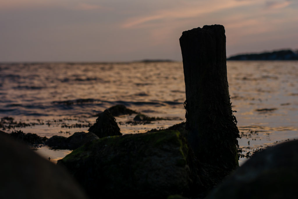 detail of a log and rocks against the water at the beach in niantic, connecticut at sunset, photographed by jamie bannon photography.